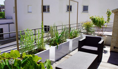 Amenagement-terrasse-paris